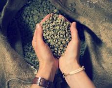 siemer_hannoversche_kaffeemanufaktur_01
